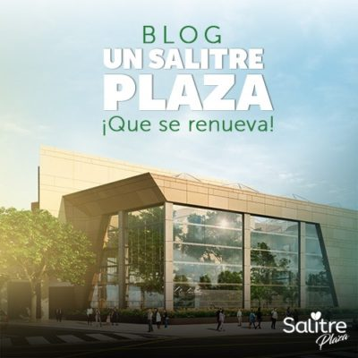 Blog-Salitre-Renovado
