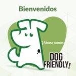 Normas de la Casa – Dog Friendly