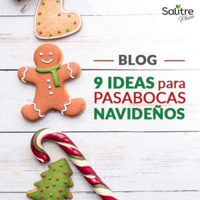 Blog-pasabocas