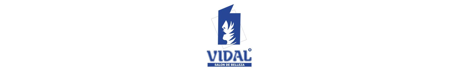 banner-Vidal