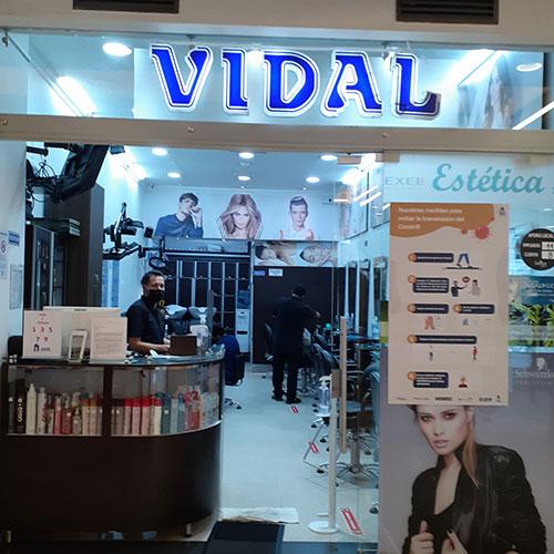 VIDAL-1