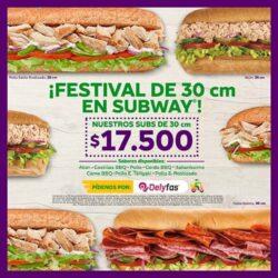 festival de 30 salitre plaza_page-0001